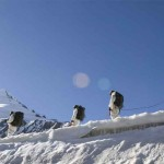 Siachen Glacier: Battling on the roof of the world