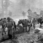 The Border War-November 1962