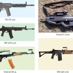 Empowered Committee – evaluating rifles, carbines?