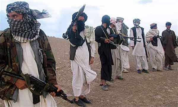 history of the taliban essay The foreign policy essay: afghan lessons learned  afghanistan may have  been the most successful covert action in our nation's history  than moscow to  send the resources necessary to fight the taliban, especially in the.