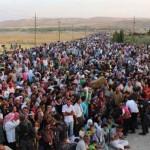 Stranded Refugees, Bewildered Diplomacy: Humanitarian Mayhem in Europe