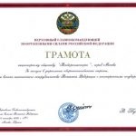 Commander-in-Chief of the Russian Armed Forces awards Rosoboronexport with Certificate of Honor
